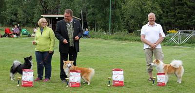 Baesta-hanhundsklass.jpg